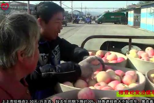 地面苹果收尾迟—栖霞蛇窝泊镇苹果交易实录 ()