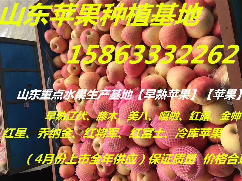 QQ图片20160225154233_副本