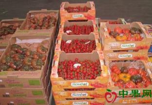 法国水果蔬菜减产 价格飙升 ()