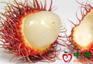 越南水果需继续提高品质确…