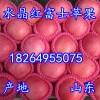 18264955075山东苹果批发基地