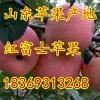 诚信供应山东水晶红富士苹果