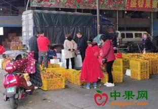 广西桂林:水果价格回落啦