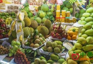 东盟各国必争国内水果市场 ()