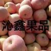大量供应苹果,梨,大樱桃