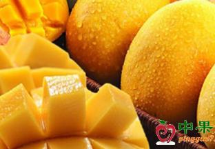 江苏南京:水果价格同比下…