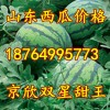 18764995773山东油桃甜王京欣西瓜大量上市