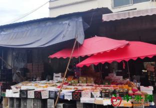 江苏苏州:水果交易行情回温力度有限 ()